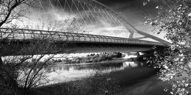 Paseando por la ribera. Puente del Tercer Milenio. Zaragoza
